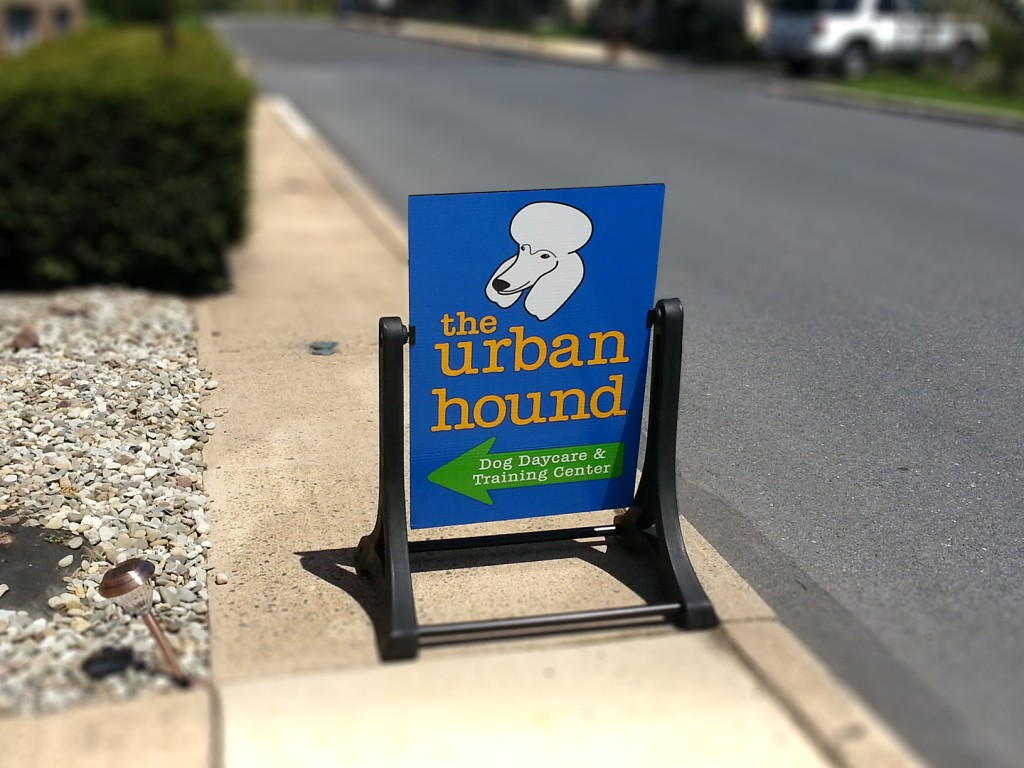 Swinger sidewalk sign for the urban hound